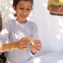 Sukkot, The Holiday Of Happiness - AishLIT Website