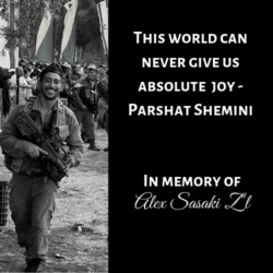 This world can never give us absolute joy - Parshat Shemini