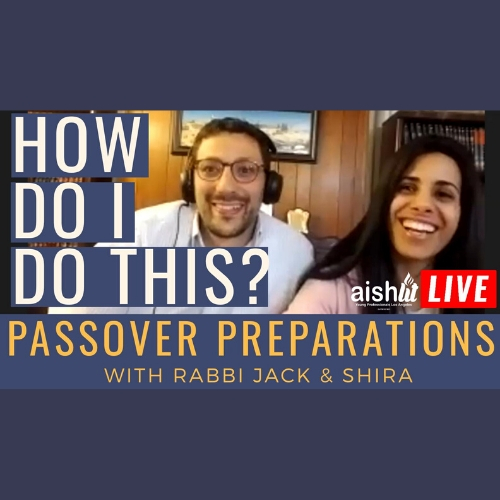 How Do I Do This On My Own, Passover Preparations - AishLIT Website